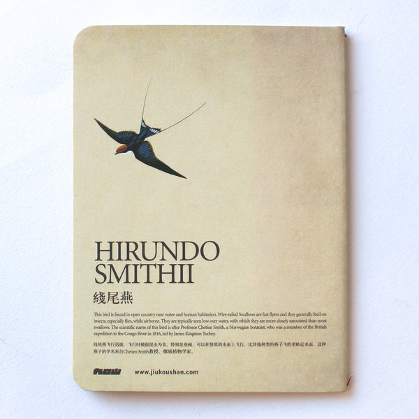 Soft Binding Brown Paper Pocket Notebook - Hirundo Smithii Wire Tailed Swallow