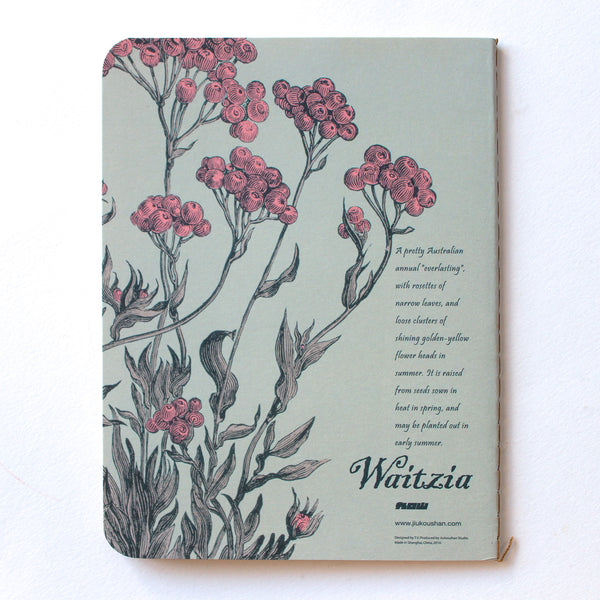 Soft Binding Brown Paper Pocket Notebook - Waitzia Aurea