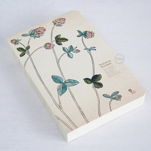 jiukoushan Herb Edition Notebook Trifolium Pratense Red Clover