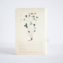 Herb Edition Notebook - Trifolium Pratense Red Clover