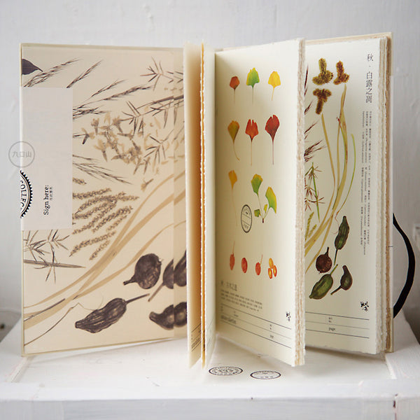 Nature collection sketchbook - Autumn