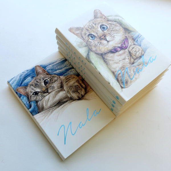 4 for £10 - Nala Cat Notebooks