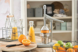 french inspired juicer