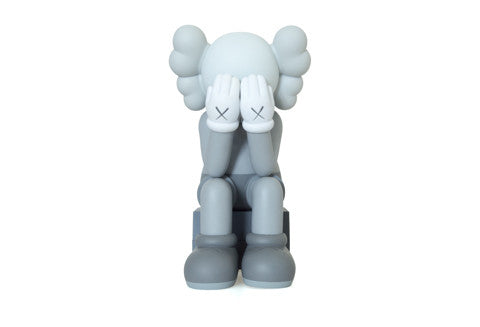 Kaws Passing Through Companion Gray
