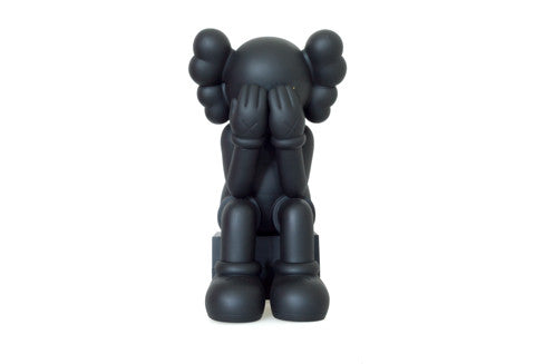 Kaws Passing Through Companion Black