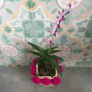 products/FUCHSIA_catch_all_basket_with_orchid_atelierBOEMIA_2_f4fde852-0d5b-4ac8-8c98-f38413752a68.jpg