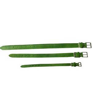 LEATHER DOG COLLAR large GREEN