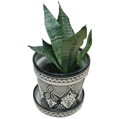 SAFI planter large BLACK