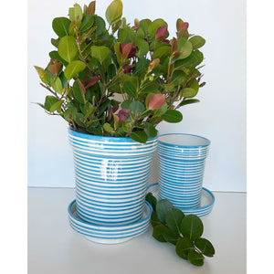 products/atelierboemia_turquoise_bullseye_planters_in_use_22401ef4-fc90-40c6-9566-1e1314300b6d.jpg
