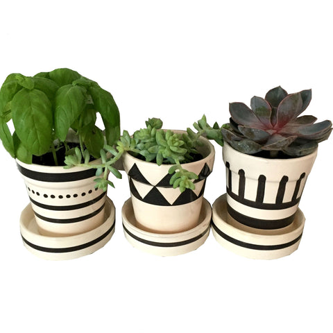 GRAPHIC ceramic planter - set of 3