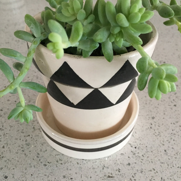 GRAPHIC PLANTER set of 3