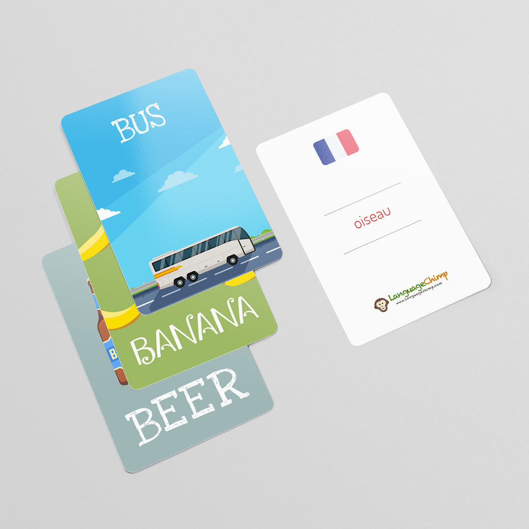 French Flashcard Set - Learn Vocabulary