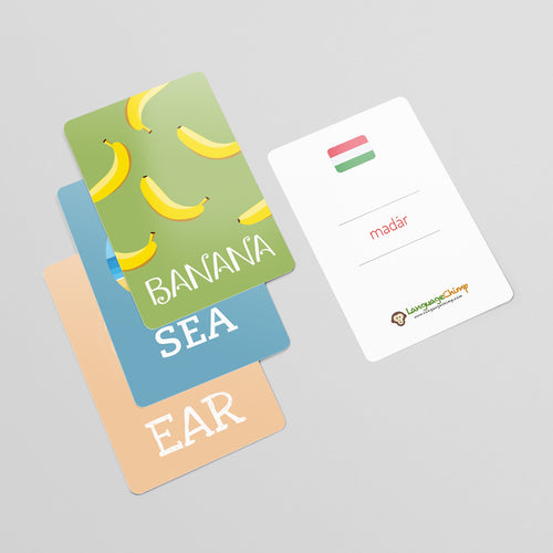 Hungarian Flashcard Set - Learn Vocabulary