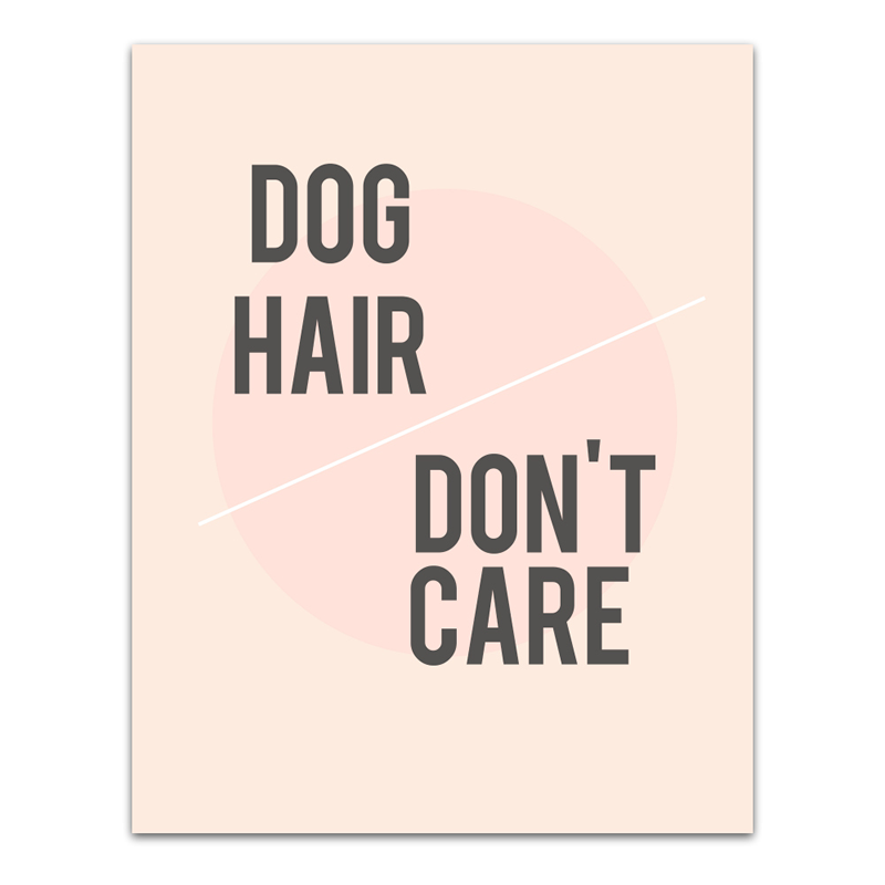 DOG HAIR DON