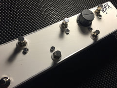 Will Sledge Fx WSFX Custom True Bypass Looper