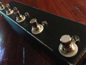 5 Channel True Bypass Looper