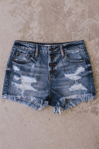 Hidden Jeans dark wash distressed denim shorts with exposed button fly.