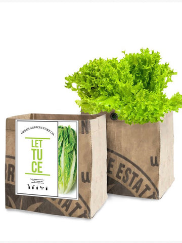 Urban Agriculture Leafy Greens Grow Kits