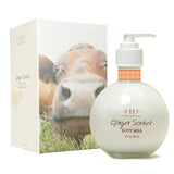 "FHF ""Ginger Sorbet"" Body Milk"