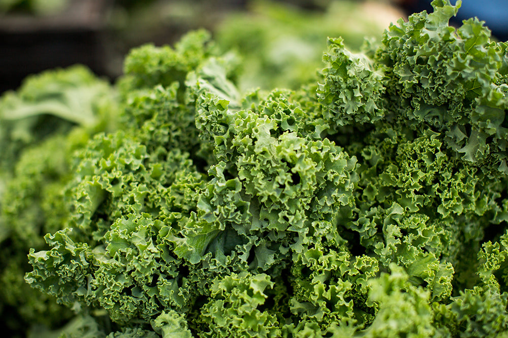 Organic Food's Most Wanted: Kale Joins the Dirty Dozen