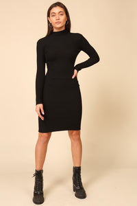 Fitted Turtleneck Sweater Dress