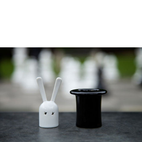 Magic Hat - Salt and Pepper Shakers