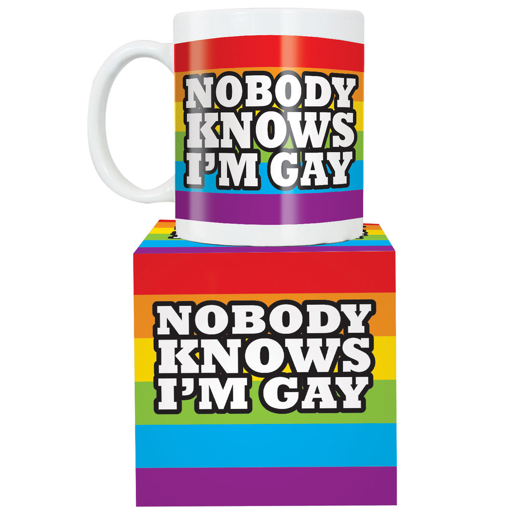 Nobody Knows I Am Gay Mug