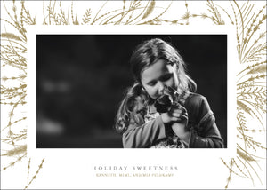 Holiday Photo Card: Tender Wreath