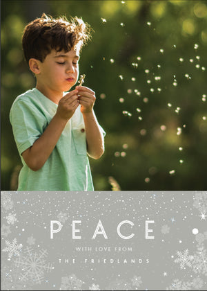 Holiday Photo Card: Tranquil Snow