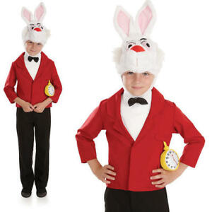 Mister Rabbit Costume