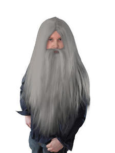 Long Wizard Wig & Beard