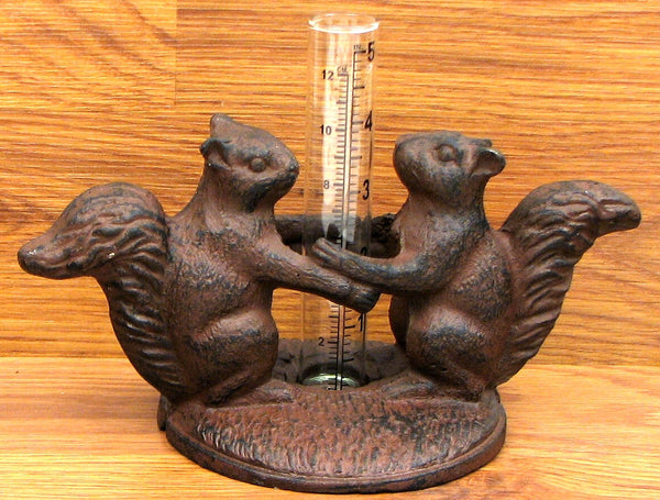 Squirrel Rain Gauge