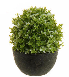 Potted Artificial Boxwood