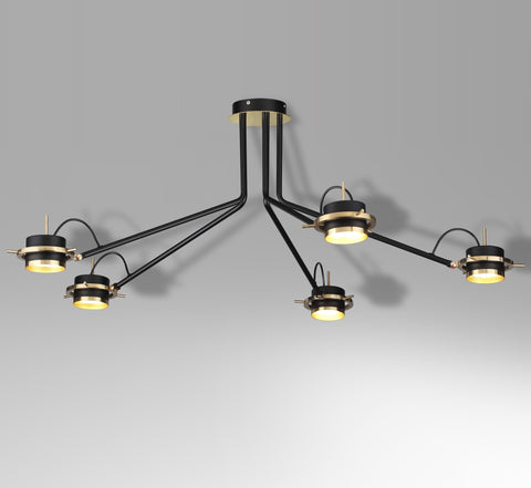 5-head ceiling lamp