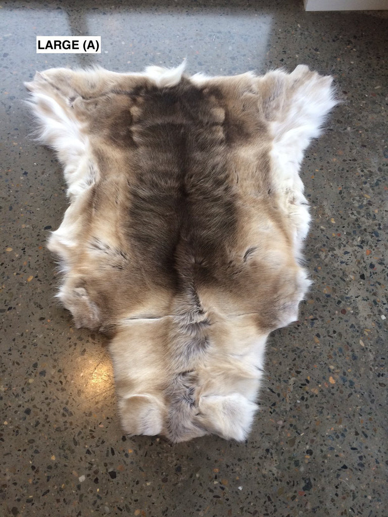 Reindeer Hides From Finland
