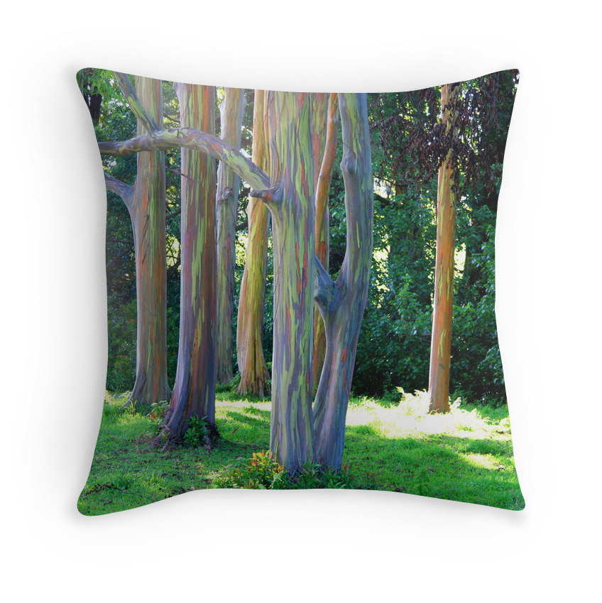 Rainbow Eucalyptus Pillow
