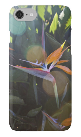 Sunny Bird of Paradise iPhone Case
