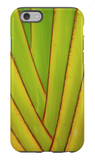 Travelers Palm iPhone Case