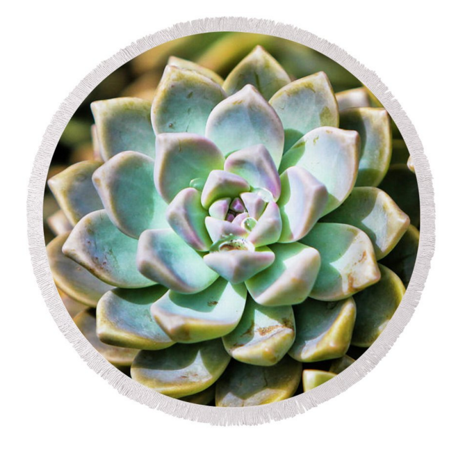Succulents Round Towel