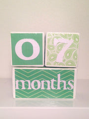 Nursery Photo Blocks- Green Tea