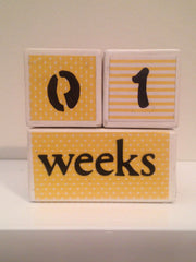 Nursery Photo Blocks- Sunshine