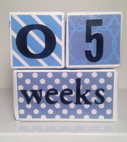 Nursery Photo Blocks- Baby Blue