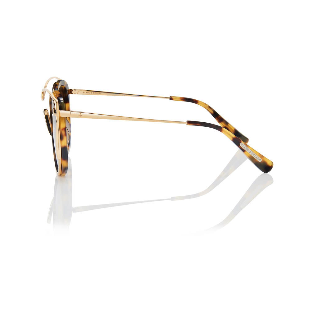 SINGAPORE (Honey Tortoise and Gold Metal with Solid Brown Lens)