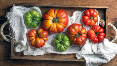 The Fascinating Truth Behind Tomatoes And Gut Health Hyperbiotics