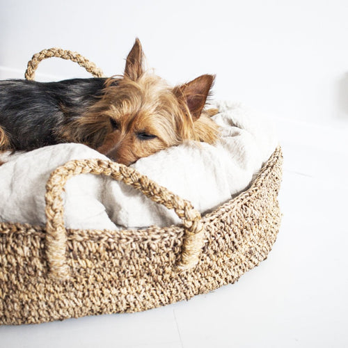CUSHION FOR DOGGY BASKET (Large) by Tikau