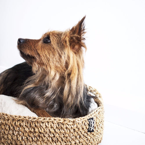 CUSHION FOR DOGGY BASKET (Medium) by Tikau