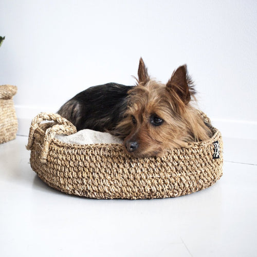 DOGGY BASKET by Tikau (Chihuahua, Small)