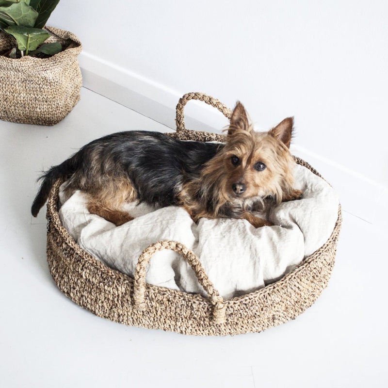 DOGGY BASKET PRE-ORDER by Tikau  (Foxterrier, Medium)