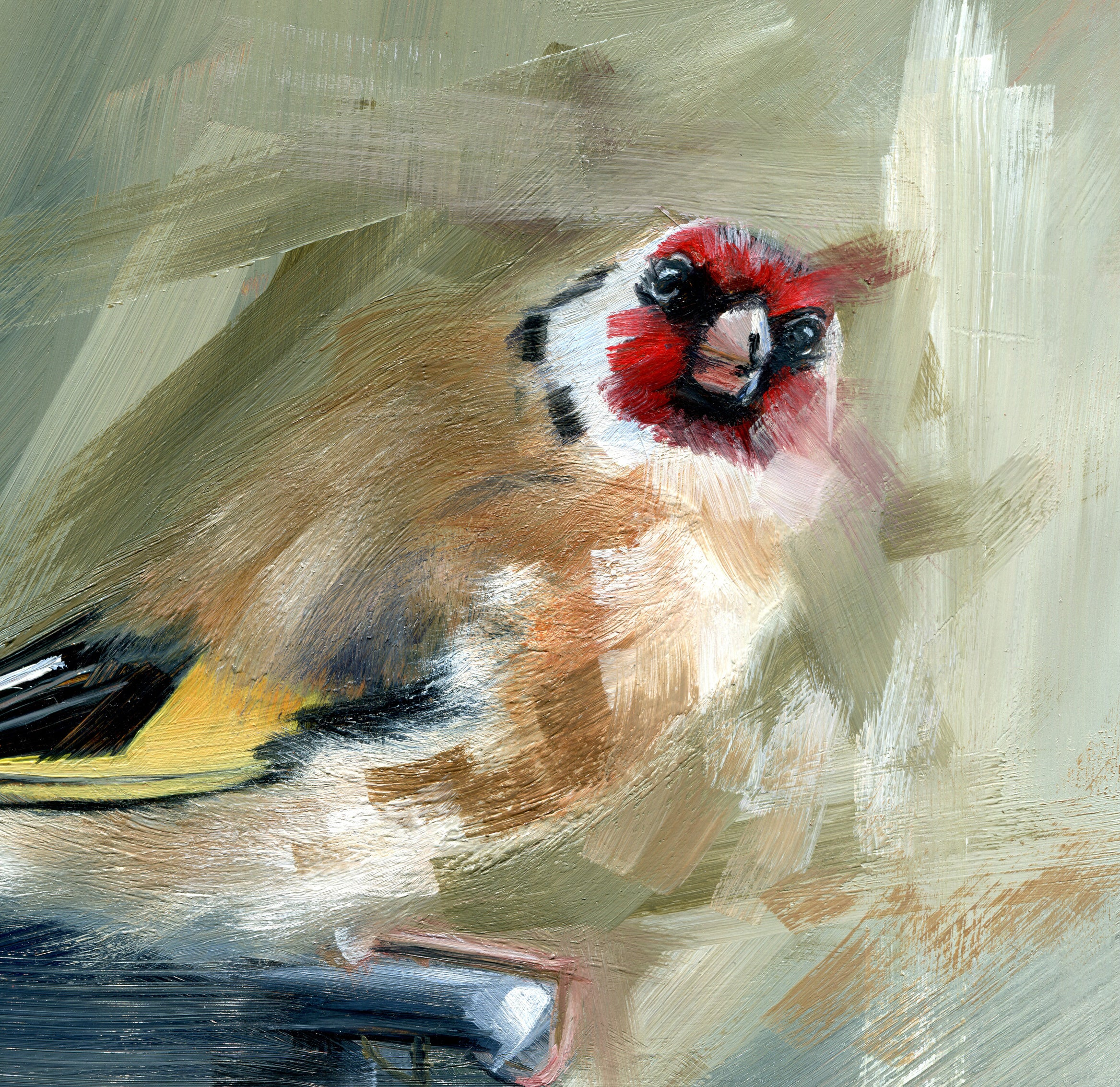 My Goldfinch (original)