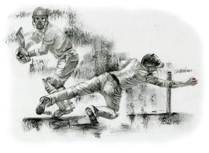 That Taylor Catch! - prints & card